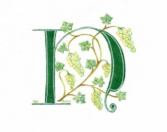 Initial letter 'N' handpainted in green with grapes on a grapevine.