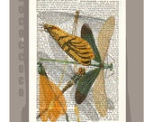 Beautiful DRAGONFLY  -ARTWORK  printed on Repurposed Vintage Dictionary page -Upcycled Book Print