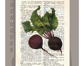 Antique French VEGETABLES/BEETS Artwork on a page from vintage Dictionary -Upcycled Book Print