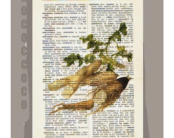 Antique French VEGETABLES/ Chicory Root  Artwork on a page from vintage Dictionary -Upcycled Book Print