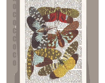 INSECTS  -ARTWORK  printed on Repurposed Vintage Dictionary page -Upcycled Book Print