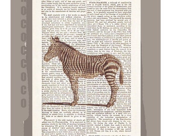 ZEBRA -ARTWORK  printed on Repurposed Vintage Dictionary page -Upcycled Book Print