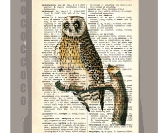 OWL1 -ARTWORK  printed on Repurposed Vintage Dictionary page -Upcycled Book Print