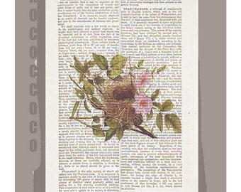 NEST1 -ARTWORK  printed on Repurposed Vintage Dictionary page -Upcycled Book Print