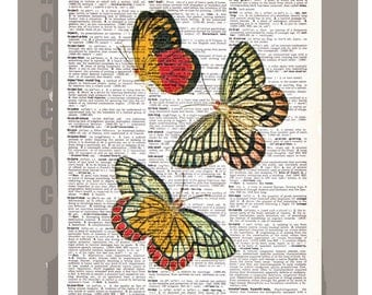 Beautiful BUTTERFLIES  -  ARTWORK  printed on Repurposed Vintage Dictionary page 8 x 10 -Upcycled Book Print