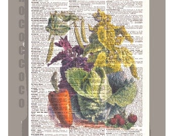 Antique French VEGETABLES 3Artwork on a page from vintage Dictionary 8 x11 -Upcycled Book Print