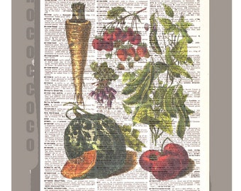 Antique French VEGETABLES 1 Artwork on a page from vintage Dictionary 8 x 11 -Upcycled Book Print