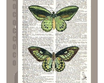 Beautiful green BUTTERFLIES - ARTWORK printed on Repurposed Vintage Dictionary page -Upcycled Book Print