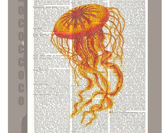 JELLYFISH3 -ARTWORK  printed on Repurposed Vintage Dictionary page 8 x 10 -Upcycled Book Print