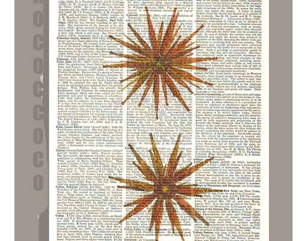 SEA Urchins -ARTWORK  printed on Repurposed Vintage Dictionary page 8 x 10 -Upcycled Book Print