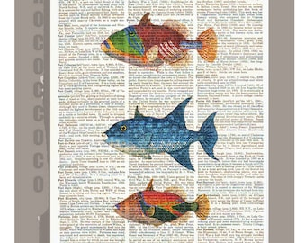 Exotic  FISH   -ARTWORK  printed on Repurposed Vintage Dictionary page 8 x11 -Upcycled Book Print