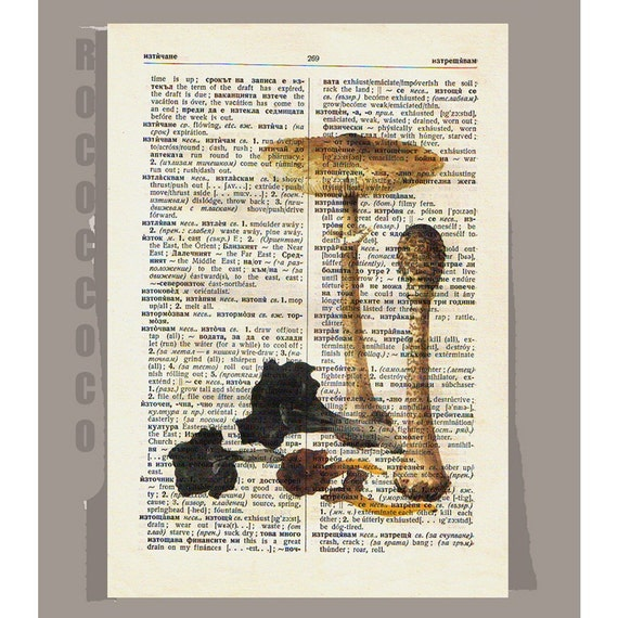 Antique French VEGETABLES/MUSHROOMS2 Artwork on a page from vintage Dictionary -Upcycled Book Print