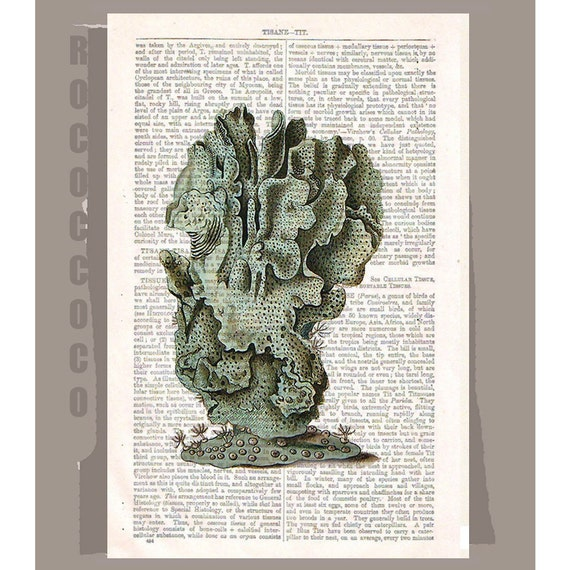 Blue CORAL  -ARTWORK  printed on Repurposed Vintage Dictionary page -Upcycled Book Print