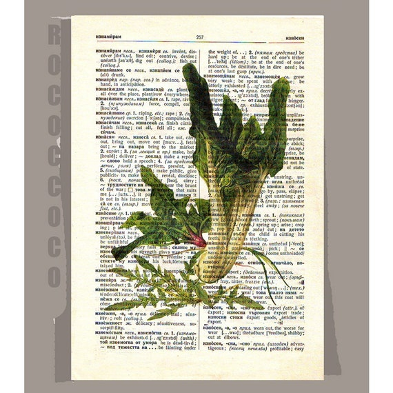 Antique French Vegetables/SWISS Chard and SPINACHArtwork on a page from vintage Dictionary -Upcycled Book Print