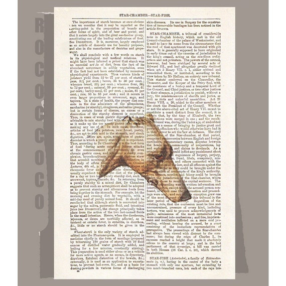 GREYHOUND Dog -ARTWORK  printed on Repurposed Vintage Dictionary page -Upcycled Book Print