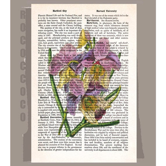 IRIS2 Artwork on a page from vintage Dictionary -Upcycled Book Print