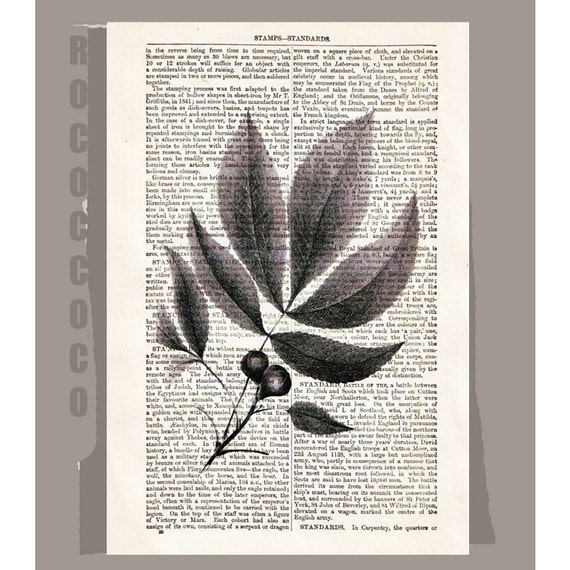 OLIVE LEAVES1Artwork on a page from vintage Dictionary -Upcycled Book Print