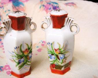 Vintage Souvenir Salt and Pepper Shakers-Japan
