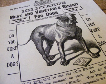 19th Century Hildyards Meat & Vegetable Dog Biscuits Antique Reproduction Print from Curious London