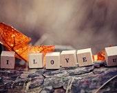 Autumn Wedding Decor Favors - Personalized Wood Blocks I LOVE YOU / Rustic home decor . letter blocks . rustic wedding photo prop