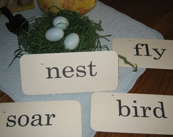 Flash Cards Vintage-Look - Nest Theme - 8 count