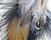 """30% OFF - Feather Earrings - Black, Orange, Gold & Grey Blue - """"Crow Meets Quail"""""""