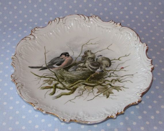 Beautiful Bird Plate Bowl Ornate with Gold Trim Bird Nest and Spring Baby Birds