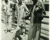 "Vintage Photo ""Middle Eastern Monkey Fun"", Photography, Paper Ephemera, Snapshot, Old Photo, Collectibles - FT018"