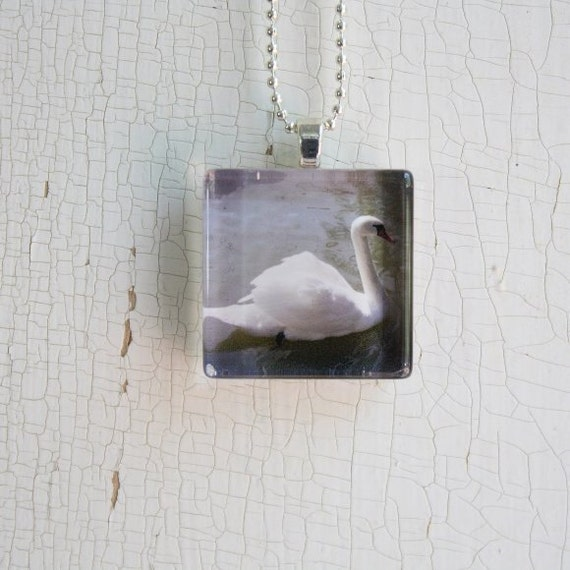 White Swan Bird Photo Glass Tile Pendant Necklace