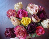 15 Dried Roses - Natural Color - Herbs for Spells - Roses for Luck, Love, Romance