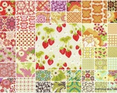 "Meadowsweet Sandi Henderson (43) 5"" Quilt Charm Squares"