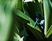 Reserved Listing for MM - Stealth - Army Men Series