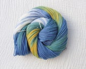 Hand Dyed Merino DK  Yarn 90g - Vendee