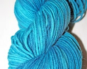"Hand-dyed ""Electric Youth"" Coruna Merino Superwash Worsted"