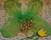 Celtic iRiSH Fairy WiNGS with TULIP Wand