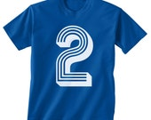 Boys 2nd birthday number  t shirt          ANY SIZE ( 7 color choices )