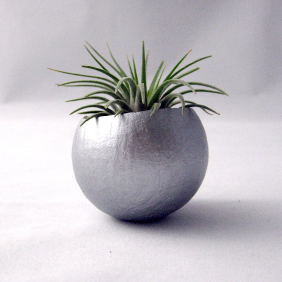Mini Air Plant Container Pod // Silver Planter // Home and Garden // Gifts Under 20