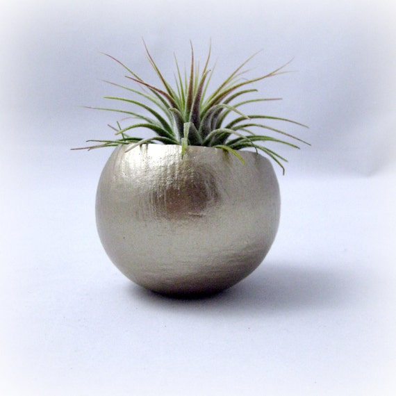 Mini Air Plant Container Pod - Gold // Planter // Home and Garden // Gifts under 20