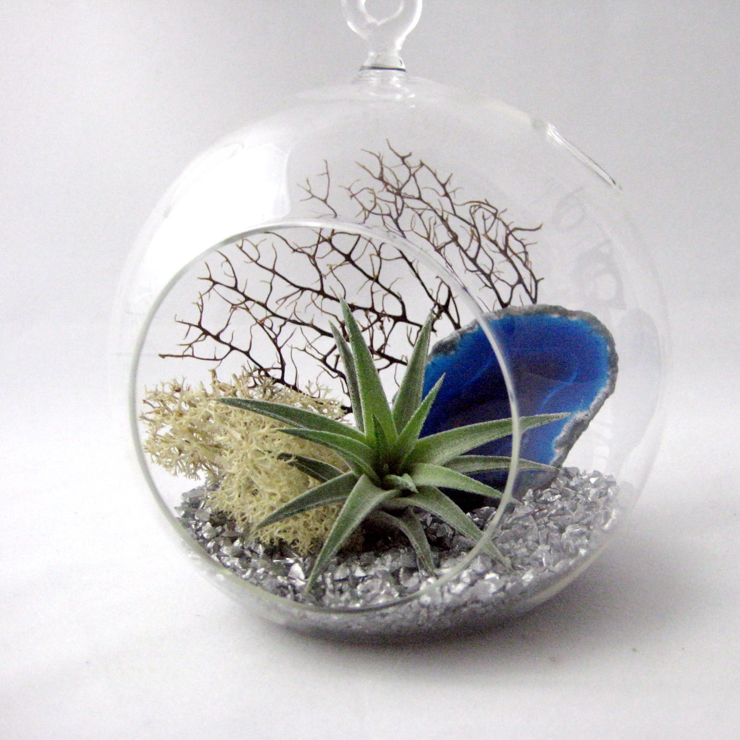 blue agate air plant terrarium by seaandasters on etsy. Black Bedroom Furniture Sets. Home Design Ideas