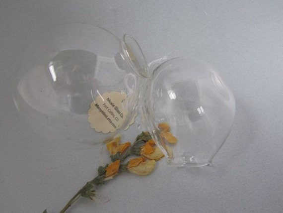 Hanging Glass Globes-  Set of Two
