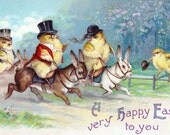 Easter Chicks Ride Bunnies as Horses - Hunt Scene - Sidesaddle Rider