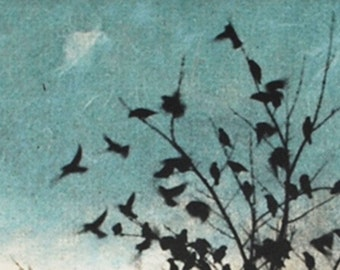 Art Print Etching, February Visit, Doves Fly Away
