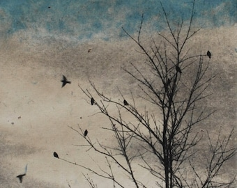 Art Print Etching, February Visit, Doves Strand