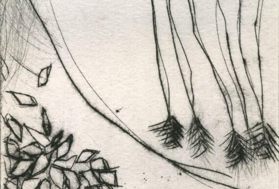 art print etching, Garden Detail