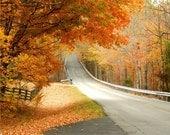 Fall Foliage,Fine Art Photograph, Photo Art Print 8x10 , Autumn Photography