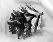 Hand Forged Iron Pine Cone Birdfeeder Metal Ornamental Art Unique GIft Mothers Day Valentine's