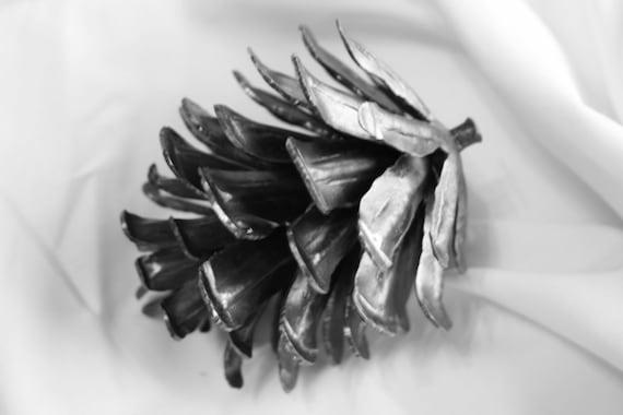 Hand Forged Iron Pine Cone Birdfeeder Metal Ornamental Art Unique GIft