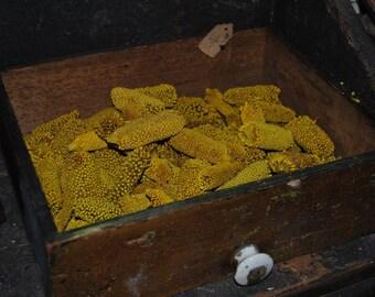 8 Oz Yellow Babu - Botanical - Potpourri - Home Decor