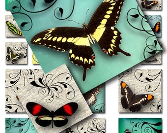 Butterflies Swirls Handmade Papers Instant Download 1 and 2 inch Squares Sampler Sheet JPEG Images (A-28-12)