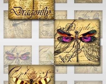 Dragonflies Ephemera Ferns Instant Download Resin Glass Scrabble Tile Pendants 1, 2 Inch Digital Collage Sheet Square Images (S-62)